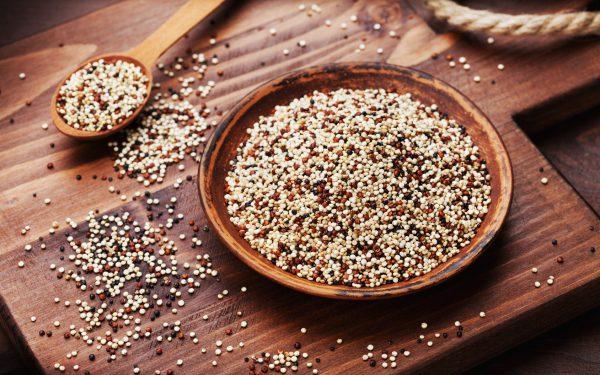 komosa ryżowa